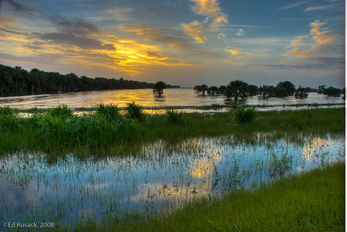 Lake Jesup flood waters after Tropical Storm Fay   by Ed Rosack