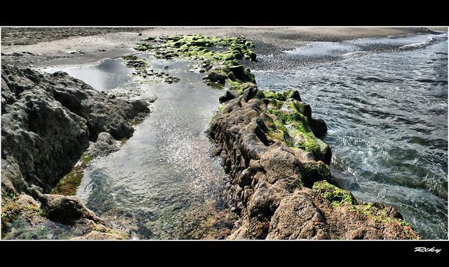 Marea Baja II - Low Tide II