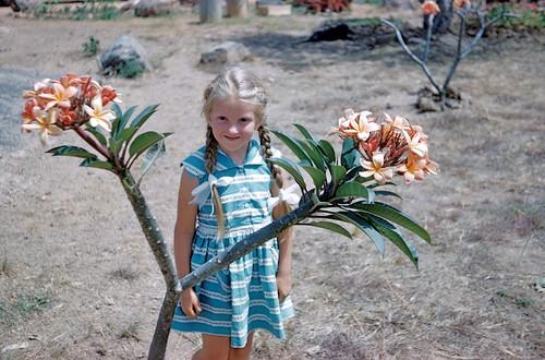 blue smile garden dress frangipani ruth plaits kuru