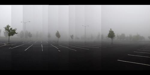 trees panorama copyright mist fog landscape parkinglot pavement empty eerie panoramic asphalt ghostly allrightsreserved lampposts zuikodigital1454 olympuse510 blackwhitescene ©daveelmore
