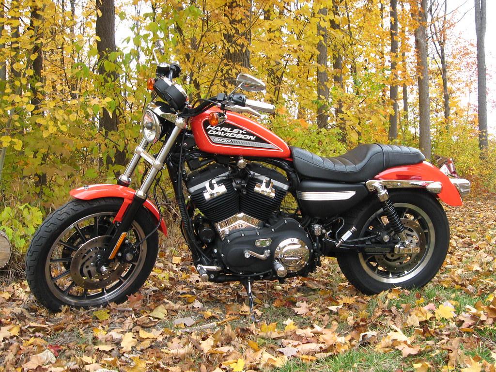 Harley Davidson Colors >> Sportster Harley Davidson 883r Fall Colors Orange Leaves B