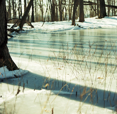 trees snow newyork 120 film ice forest frozen pond kodak hike hasselblad portra nyack 400nc autaut 120mmcf