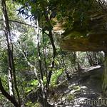 Viajefilos en Australia. Blue Mountains 029