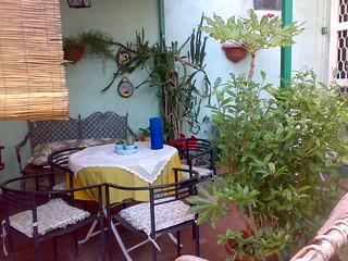 My nice garden
