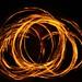 fire flowers by Speculum Mundi