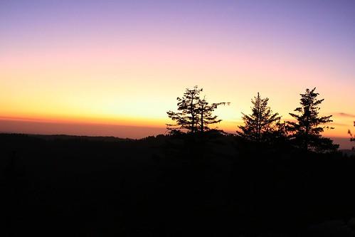 california pink trees sunset red orange sun sierranevada eldoradocounty carsonpass highay88