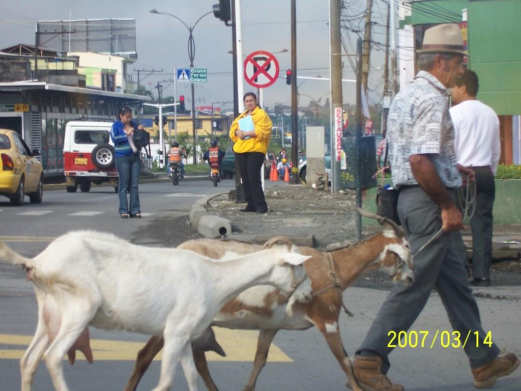 Viaje Colombia 151