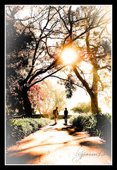 A Winters Morning @ Worldwide Photo Walk 2009 | by Jiaren Lau