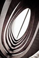 wooden curves no.7
