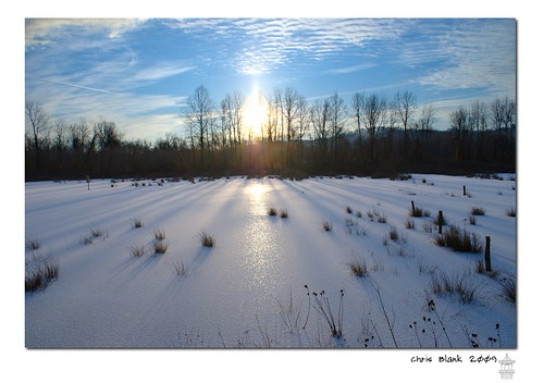 winter ohio wetland
