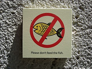 Please don't feed the fish sign | by pr0digie