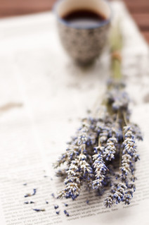 lavender, tea and newspaper | by lisamurray