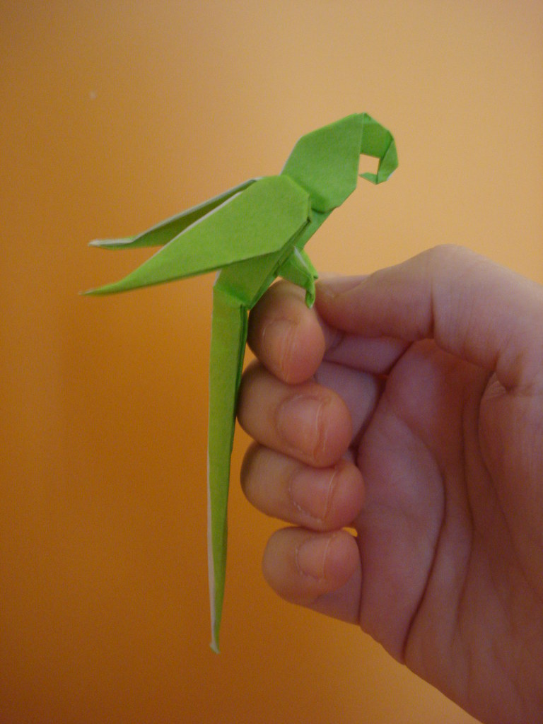 Step instructions how to make origami a parrot Vector Image | 1024x768