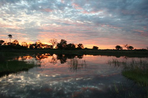 Okavango delta sunset | by jonrawlinson