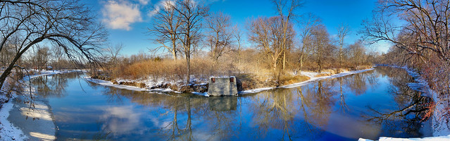 Chicagoland - Mc Dowell Grove Forest Preserve - Winter