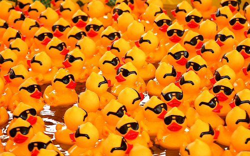 Rubber Ducks with Sunglasses | by DavidDennisPhotos.com
