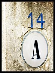 14 A | by Iguana Jo