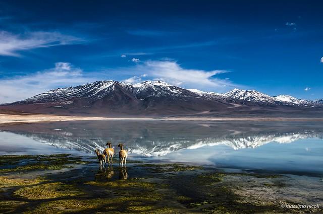 Le Bellezze della Laguna Bianca - The beauty of the White Lagoon