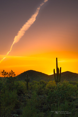 usa sunrise lens dawn adobelightroomcc 2016 christmas scottsdale desert mountain review dustinabbottnet comparison thousandwordimages travel canonefm18150mmf3563isstm photography camera cactus arizona mirrorless canoneosm5 adobephotoshopcc photodujour dustinabbott unitedstates us saguaro mcdowellmountains
