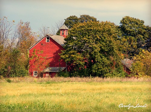 old autumn trees red sky green fall abandoned nature grass barn vintage landscape colorful seasons natural pennsylvania seasonal pa lehighvalley