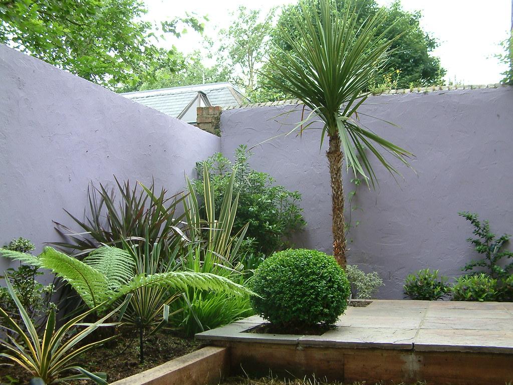 Moroccan Garden The Lush Planting Includes Specimen Cordyl Flickr