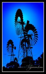 Windmills @ Worldwide Photo Walk 2009   by Jiaren Lau