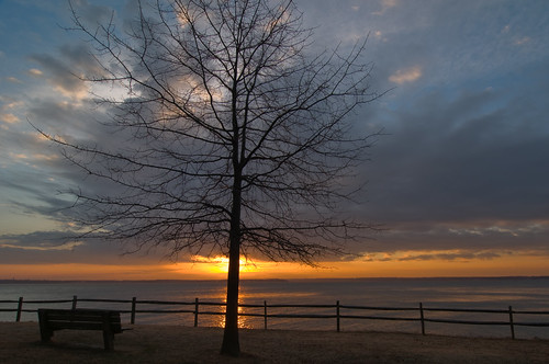 statepark winter sun storm tree rain weather clouds sunrise fence bench virginia wideangle leesylvania d300