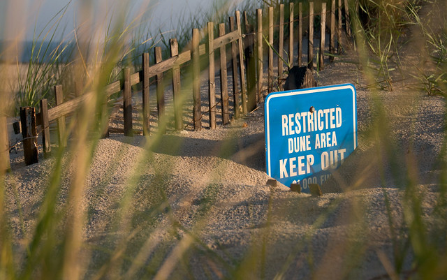Keep Off The Dunes! - Cape May Point