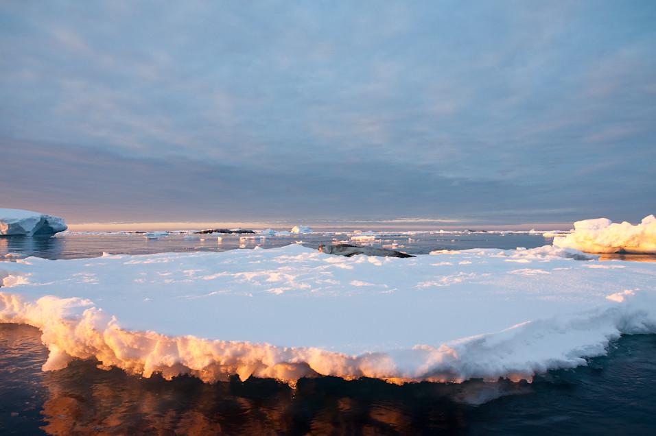 My Iceflow