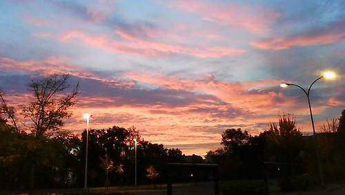sunrise vannes aube sonyw205