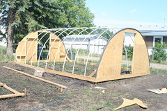 My third hoop style greenhouse | by albertahomegardening