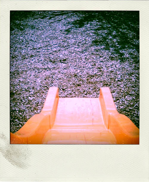 orange slide polaroid