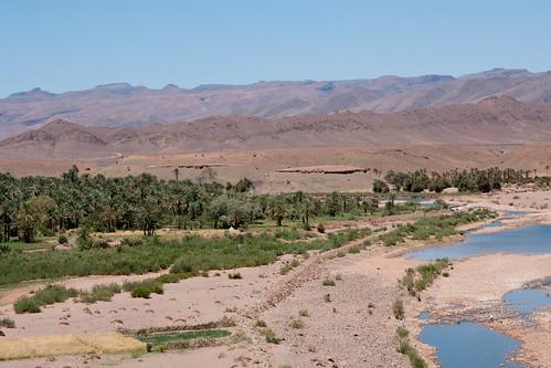 africa oasis morocco berber maroc maghreb zagora oases agdz westernsahara tamnougalt dra zawiya tamegroute dadès imini oueddraa tagounite draâ soussmassadraâ tinzouline almaġrib المغرب amezrou m'hamid tamezmout seguias qatarra