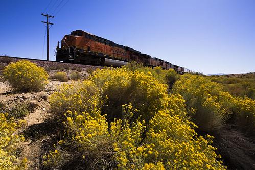 california canon outdoors desert mojave canondslr locomotives railroads inlandempire alltrains deserttrains canon1740f4lusmgroup sbcusa alltypesoftransport kenszok