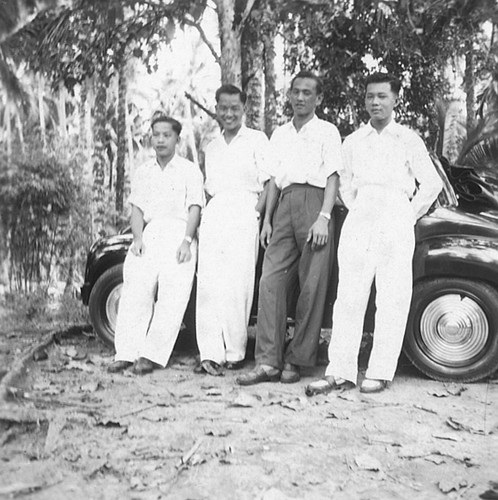 Rubber plantation in Singapore  1940s  | Singapore History