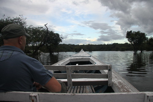 Lone Adventurer in the Amazon | by Sheree (upload site)