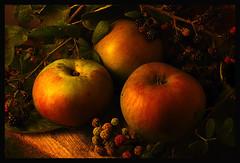 Autumn Apples 2 | by GARY HICKIN (GAZART)