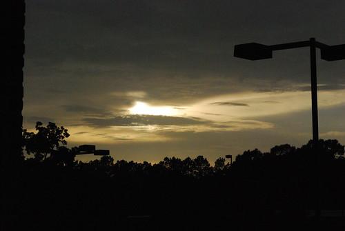 sunset david ymca lyle