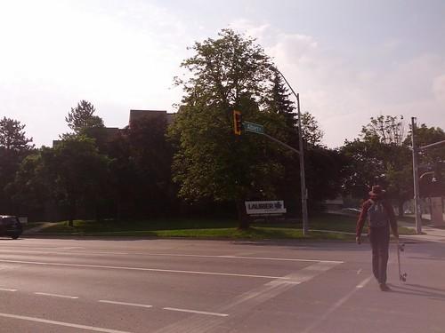 Albert and University