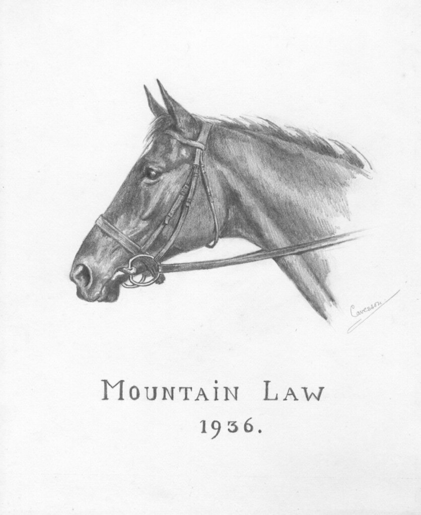 Pencil drawing 'Mountain Law' by Cavesson ? 1936 | It's ...