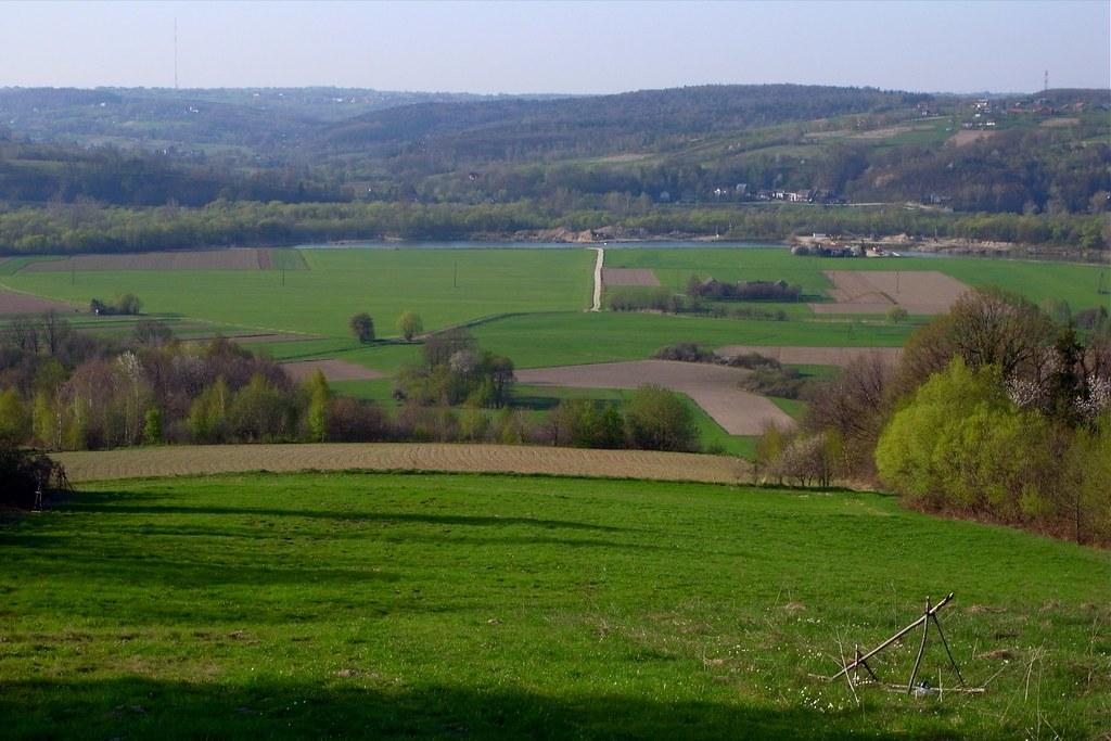 Zielone pola Niezdowa / Green fields of Niezdów