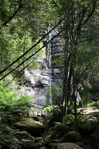 Snug Falls -- January 11, 2009 | by Christopher Neugebauer