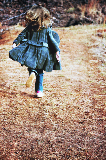 He who would learn to fly one day must first learn to stand and walk and run and climb and dance; one cannot fly into flying.