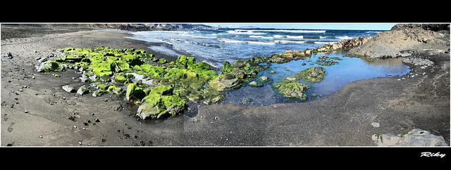 Marea Baja -  Low Tide