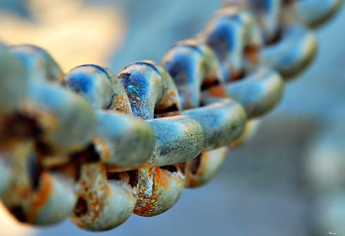 rust dof chain sigma18200 venturamarina nikond80
