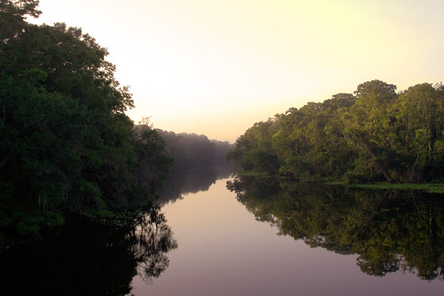 county morning water fog creek sunrise stjohns six mile sixmilecreek sixmilemarina