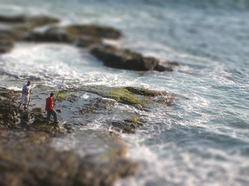 Tilt Shift Fishing | by noromdiam