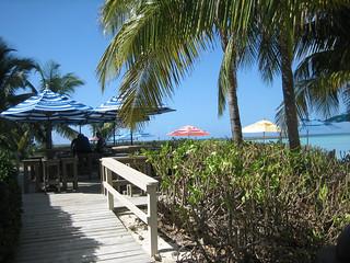 Castaway Cay - Serenity Bay  28 | by Gator Chris