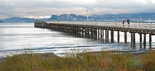Winter afternoon at Petone Wharf