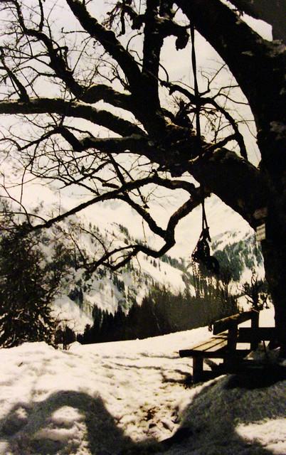 Winterlandschaft - Baum mit Bank